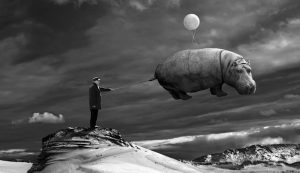 flying_hippo_by_kleemass